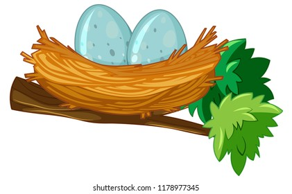 Two eggs in nest illustration