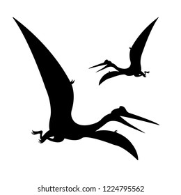 Two flying black Pteranodon Pterodactyl  vector silhouette illustration isolated on white background