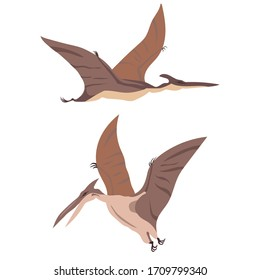 Two flying dinosaurs, pterodactyl, set, vector illustration