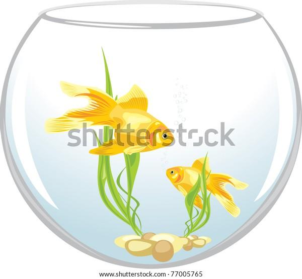 two-goldfishes-aquarium-vector-600w-7700