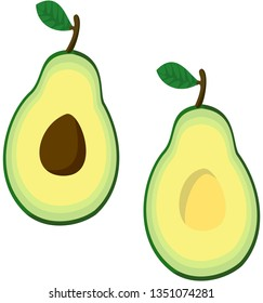 Two halves of avocado: with seed and without. Vector.