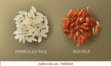 Two handfuls of white parboiled and red cargo rice, isolated on a brown background, realistic vector. Healthy diet, vegetarian food, design element