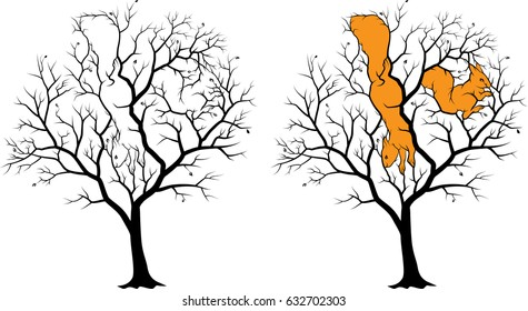 Two hidden squirrels on the tree, picture - riddle with solution. Black silhouette on white background, the solution is highlighted in   orange.