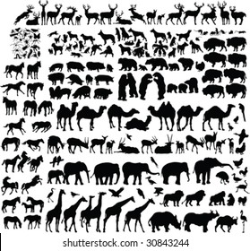 two hundred animal silhouettes - vector