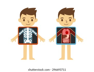 Two illustrations of cute cartoon boy with x-ray screen showing his internal organs and skeleton. Element of educational infographics for kids.