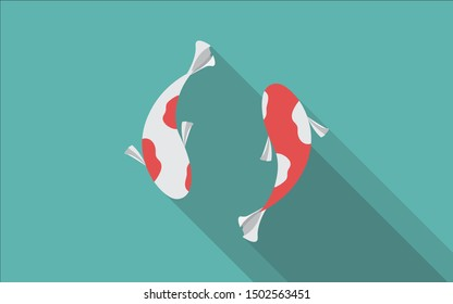Two koi fish are swimming closely.