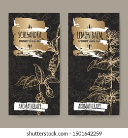 Two labels with Lemon balm aka Melissa officinalis and Schisandra aka Schisandra chinensis sketch on black lace background. Great for traditional medicine, perfume design, cooking or gardening.