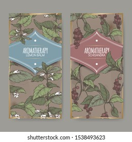 Two labels with Lemon balm aka Melissa officinalis and Schisandra chinensis color sketch on vintage background. Great for traditional medicine, perfume design, cooking or gardening.