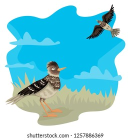 Two lark, flying on the sky, stand on the grass, blue sky on the background and green grass. Vector characters of birds.