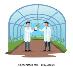 Two male scientists examining plant sample in modern glass greenhouse. Men are researching science agriculture farming together. New plants research with tablet. Flat cartoon vector illustration