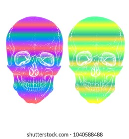 two multi-colored skulls