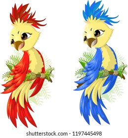 two options parrot