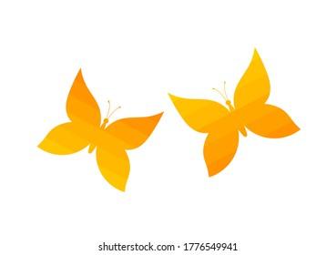 Two orange butterflies. Vector illustration.