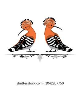 two orange hoopoes