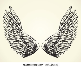 Two outspread large soft wings with long fluffy glide white plume. Vector monochrome freehand black ink drawn background sketchy in art scribble ancient style pen on paper with space for text on sky