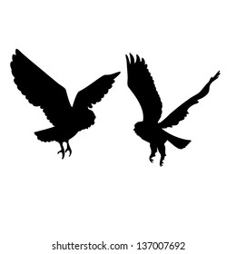 Two owls love silhouettes