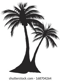 Two palm trees.  VECTOR EPS-10