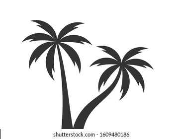 Two palm trees. Vector illustration.