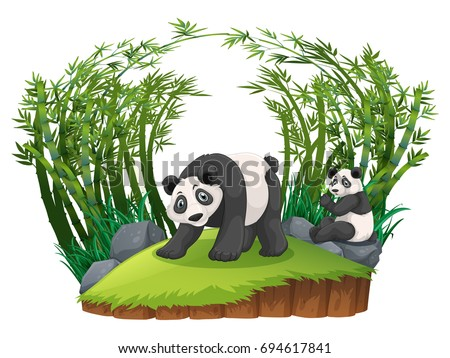3eb87e17ccc Two Pandas Bamboo Forest Illustration Stock Vector (Royalty Free ...