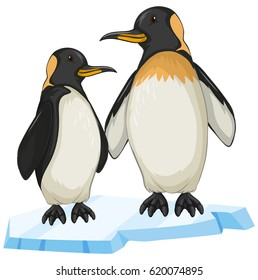 Two penguin on ice illustration