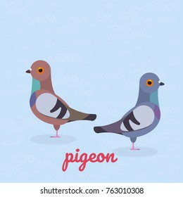 Two pigeons. Pair of flat doves. Vector illustration