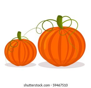 Two pumpkins, big and small over white
