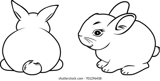 Two rabbits. Contour drawing. Vector
