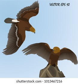 two realistic golden eagles - one flying, the second sitting on a rock