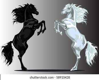 Two rear horses