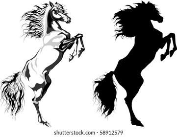 Two rear horses: monochrome illustration and silhouette