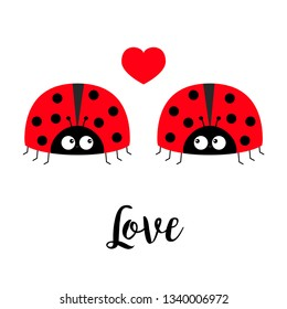Two red lady bug ladybird icon set couple with hearts. Love greeting card. Happy Valentines Day. Cute cartoon kawaii funny baby character. Flat design. White background. Vector illustration