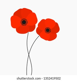 Two red poppies flowers growing isolated on white background. Vector illustration.
