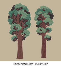 Two redwoods. Hand drawn vector illustration. Ukraine