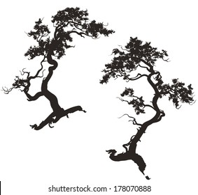 two silhouettes of pine trees with trunks florid for your design, white background