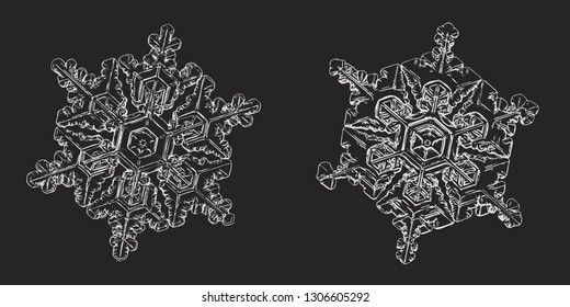 Two snowflakes isolated on black background. Vector illustration based on macro photos of real snow crystals: elegant star plates with hexagonal symmetry, short, simple arms and complex inner details.
