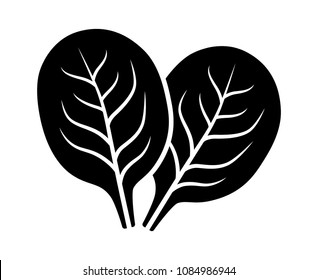 Two spinach vegetable leaves flat vector icon for food apps and websites