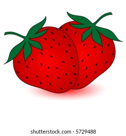 Two strawberries, vector.