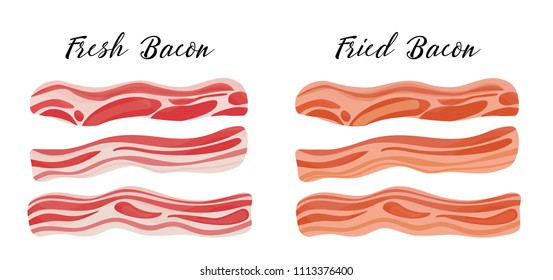 Two types of bacon, pork - fresh and fried. Healthy tasty breakfast. Vector illustration in flat style
