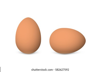 Two vector realistic brown eggs. Isolated eggs on white background.