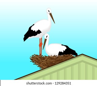 Two white storks made a nest on the roof of the house, vector illustration
