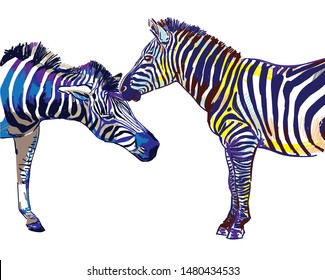 Two zebras. Stylish multi-colored pattern. Bright print. Love, relationships, romance. Male and female, male and female.