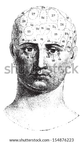 Type cranial given by Spurzheim, front view, vintage engraved illustration. Usual Medicine Dictionary - Paul Labarthe - 1885.