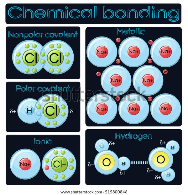 types of chemical bonding diagram  covalent (polar and nonpolar) ionic,  metallic and