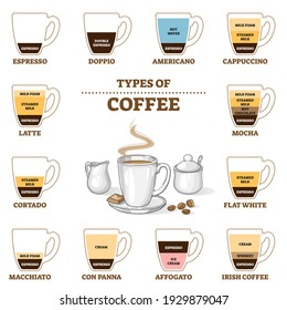 Types of coffee and cafe preparation guide outline diagram. Educational barista instruction for various hot beverage styles vector illustration. Espresso, milk, cream and foam proportion description.
