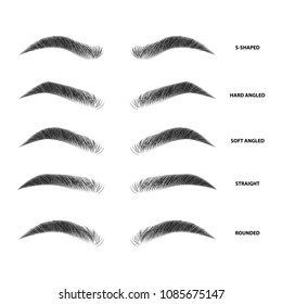 picture about Eyebrow Shapes Stencils Printable identify Eyebrow Shaping Visuals, Inventory Shots Vectors Shutterstock