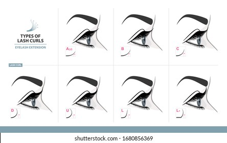 Types of Lash Curls.  Eyelash Extension for Most Attractive Look. Woman Eye with Long Thick Eyelashes. Side View. Macro, Selective Focus. Guide. Infographic Vector Illustration