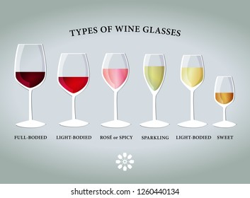 Types of proper wine glasses. Vector drawing.