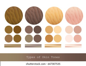 Types of Skin Tones color and texture vector illustration