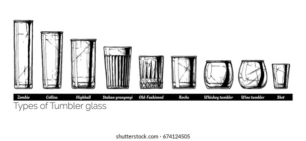 Types of tumbler glass. Vector hand drawn illustration of tumblers in vintage engraved style. isolated on white background.
