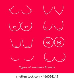 Types of women's Breasts. Shape of a woman`s breast.